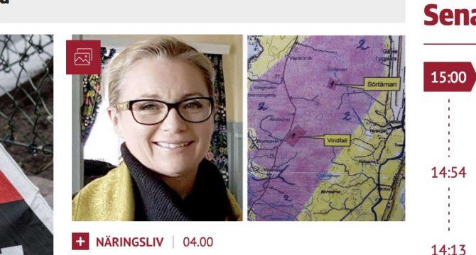 Eva Widigsson, vd för Svenska Bergsbruk AB.